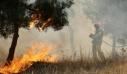 Τραγωδία στο Αιτωλικό: Ηλικιωμένος απανθρακώθηκε καίγοντας ξερά χόρτα