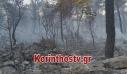 Φωτιά στο Σοφικό Κορινθίας: Πυροσβεστική και Αστυνομία ερευνούν τα αίτια της πυρκαγιάς