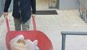 Δείτε τι σκέφτηκε ο άνθρωπος για να κουβαλήσει τα ψώνια του χωρίς σακούλα