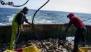 Κλεμάν Μπον για Brexit: Να μην πληρώσουν οι Γάλλοι αλιείς το τίμημα για την αποτυχία της Βρετανίας