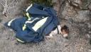 Σκύλος έπεσε σε πηγάδι 20 μέτρων στην Κοζάνη – Σώθηκε από την ΕΜΑΚ