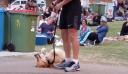 Ο σκύλος που ΠΡΑΓΜΑΤΙΚΑ δεν ήταν έτοιμος να φύγει ακόμα (βίντεο)