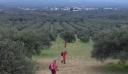 Κρήτη: Συνεχίζεται το θρίλερ με την εξαφάνιση της 84χρονης