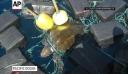 Θαλάσσια χελώνα «βαποράκι» μετέφερε κοκαΐνη αξίας 53 εκατομμυρίων δολαρίων