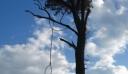 Εύβοια: 91χρονος κρεμάστηκε από δέντρο