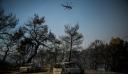 Τεράστια η οικολογική καταστροφή από τη φωτιά στην Εύβοια – 25.000 στρέμματα έγιναν στάχτη (βίντεο)