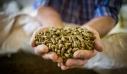 Αυτεπάγγελτη έρευνα στην αγορά τροφής για τη σίτιση γουνοφόρων ζώων