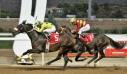 Οκτώ ιπποδρομίες και τρία ΣΚΟΡ τη Δευτέρα στο Markopoulo Park