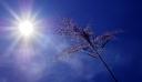 Καιρός: Μέχρι πότε θα κρατήσει ο καύσωνας – Έως οκτώ βαθμούς υψηλότερες για την εποχή οι θερμοκρασίες