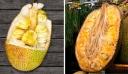 20 από τα πιο σπάνια εξωτικά φρούτα που δεν έχετε δει ούτε ακούσει ποτέ