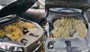 Άνοιξε το καπό του αυτοκινήτου και είδε αυτές τις εικόνες