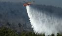 Φωτιά τώρα σε δάσος στο Σουφλί Έβρου
