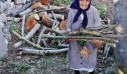 Η γιαγιά Αιμιλία από την Πελοπόννησο είναι 92 και μαζεύει ελιές και ξύλα για το τζάκι μόνη της