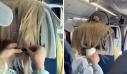 Επιβάτης αεροπλάνου κολλούσε τσίχλες στα μαλλιά της μπροστινής και τα βουτούσε στον καφέ