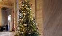 Χριστουγεννιάτικα δέντρα ξανατοποθετήθηκαν μετά από μια δεκαετία στη Βουλή