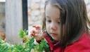 Αναβλήθηκε η δίκη για την υπόθεση θανάτου της μικρής Μελίνας