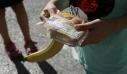 Σχολικά γεύματα: Πρόταση να περάσουν στις σχολικές επιτροπές και τα κυλικεία