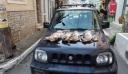 Κρήτη: Λαθροθήρες σκότωσαν τέσσερις λαγούς έτοιμους να γεννήσουν