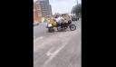 Μητέρα σέρνει το καρότσι με το μωρό πίσω από τη μηχανή που οδηγεί ο άντρας της [Βίντεο]