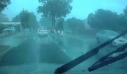 Δέντρο πέφτει πάνω σε κινούμενο όχημα on camera