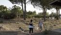 Συνεργασία της Save a Greek Stray με τις γυναικείες αγροτικές φυλακές Ελαιώνα
