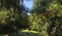 Ο Δήμος Αθηναίων εξασφάλισε 2.12 εκ. ευρώ για έργα σε Εθνικό Κήπο-Φιλοπάππου