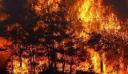 Τουρκία: Οργή κατά κυβέρνησης για τα… τρία (μόλις) πυροσβεστικά αεροσκάφη