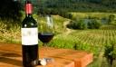 Υπ. Αγροτικής Ανάπτυξης: 10,5 εκατ. ευρώ για την προώθηση του ελληνικού κρασιού