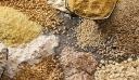 Δέσμευσαν 21 τόνους ζωοτροφές στον Πειραιά