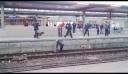 Σκύλος της αστυνομίας ρίχνει γυναίκα σε γραμμές τρένου