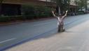 Ο έλληνας ηθοποιός που ευχαριστεί το Θεό στη μέση του δρόμου - Γιατί έπεσε στα γόνατα (φωτό)