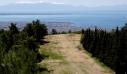 Θεσσαλονίκη: Ασυνείδητοι έκαναν μπάρμπεκιου μέσα στο δάσος του Σέιχ Σου (εικόνα & βίντεο)