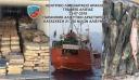 Κατασχέθηκαν πάνω από 21 τόνοι ψάρια σε λιμάνι στην Κρήτη
