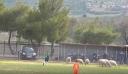 Μια εισβολή σε γήπεδο αλλιώτικη από τις άλλες!