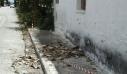 Σεισμοί στην Ηλεία: Σε ποιους δήμους θα μείνουν κλειστά τα σχολεία