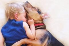 Κουτάβι και αγοράκι αχώριστοι φίλοι και στον ύπνο