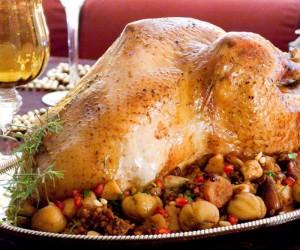 Δημιουργικές συνταγές με τη γαλοπούλα που περίσσεψε από το γιορτινό τραπέζι!