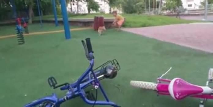 Θεία δίκη για κοριτσάκι που πάτησε την ουρά μιας γάτας! (video)