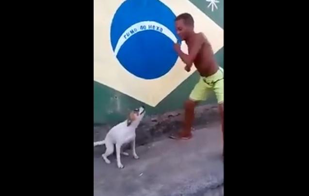 Απίστευτο! Σκύλος από τη Βραζιλία χορεύει σάμπα! (video)