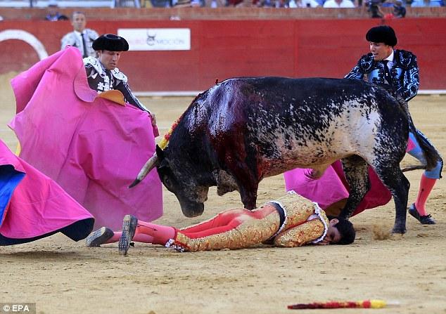 Νεκρός ταυρομάχος μετά από χτύπημα ταύρου (ΒΙΝΤΕΟ)