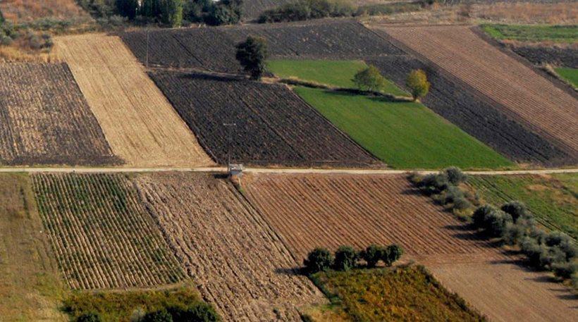 Εκτός ΕΝΦΙΑ τα αγροτεμάχια – Τον Σεπτέμβριο η πρώτη δόση