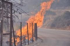 Σε σταδιακή ύφεση το πύρινο «μέτωπο» στο νησι της Χίου