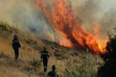 Μεγάλη πυρκαγιά στις Ερυθρές Αττικής!