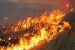 Τραγική η κατάσταση στη βόρεια Έυβοια! Κάηκε ξενοδοχειακή μονάδα!