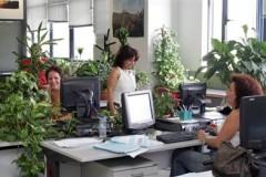 ΕΣΕΕ: Ποιες είναι οι υποχρεώσεις των λογιστηρίων για τον Αύγουστο