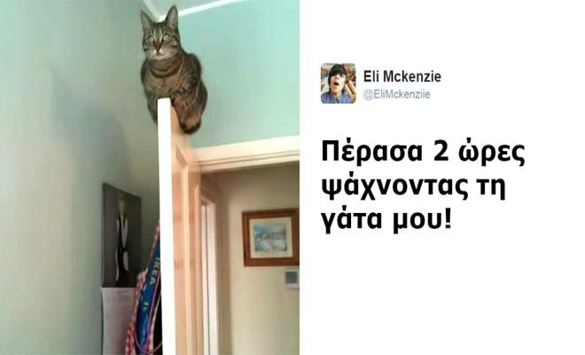Αυτές είναι οι 11 ΠΙΟ ξεκαρδιστικές Αναρτήσεις με Γάτες που είδαμε στα Social Media το 2016! Θα Λιώσετε!