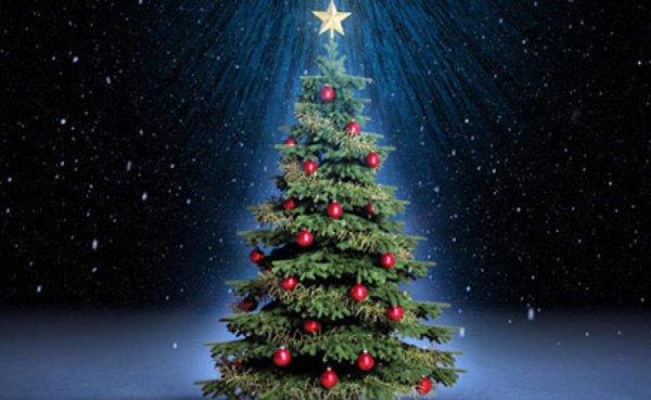 Το Χριστουγεννιάτικο δέντρο που διεκδικεί ρεκόρ Γκίνες (ΦΩΤΟ)