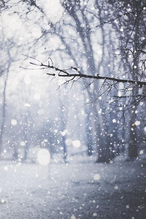 Γιατί όταν χιονίζει επικρατεί απόλυτη ησυχία;