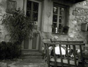 Νέο «Κωσταλέξι» στο Πήλιο σοκάρει το Πανελλήνιο! Γυναίκα πέθανε αβοήθητη από την πείνα! «Πάγωσαν» οι γιατροί από τη νεκροτομή!