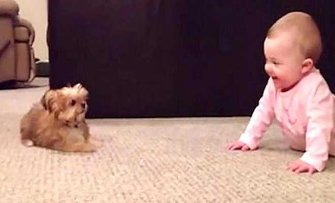 Πατέρας τραβάει την κόρη του ενώ εκείνη συζητάει με τον σκύλο. Το αποτέλεσμα θα σας κάνει να λιώσετε!!! [Βίντεο]